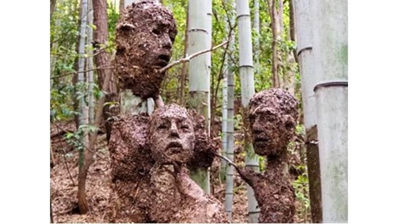 """竹林に出現した""""顔アート""""が不気味…作者は美大生 コロナ禍で生まれた作品だった"""