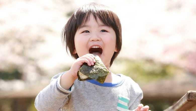 奈良公園でのお弁当は「おにぎり限定」で…奈良の幼稚園の独特ルールに県民が続々と反応