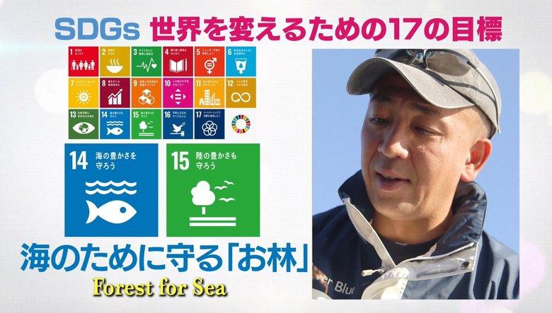 「海の自然を守る上でも貴重な場所」神奈川・真鶴町が江戸時代から大切にしているもの