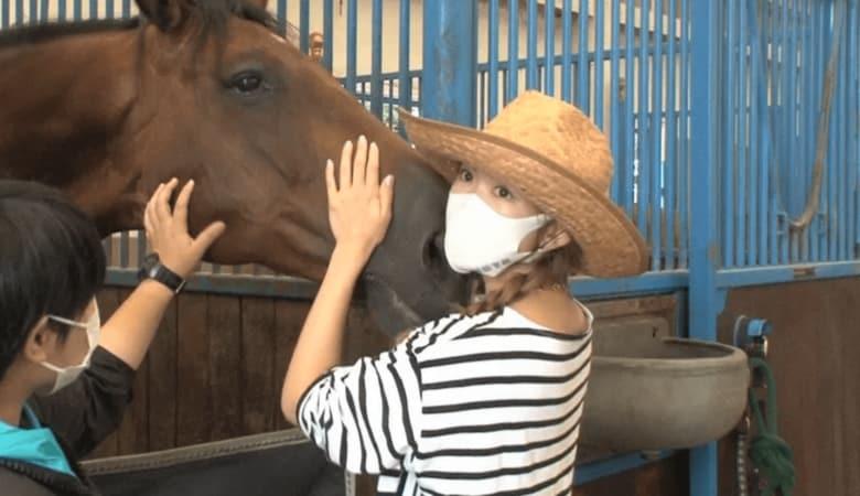 牧場経営のためロンドンから那須へ移住…紗栄子が新たなビジネスで見せた経営者の顔