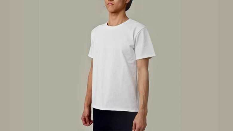 本当に透けない?「乳首が透けない白Tシャツ」を着てみたら…