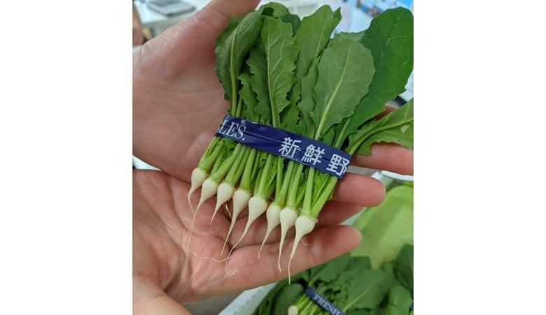 """わずか約1㎝の野菜""""間引き菜""""が話題…「生産者は数えるほど」どんな味か担当者に聞いてみた"""
