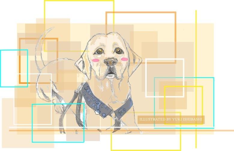 """無症状感染者も嗅ぎ分け、的中率95%!""""落ちこぼれ訓練生""""が全米初のスター・コロナ探知犬に"""