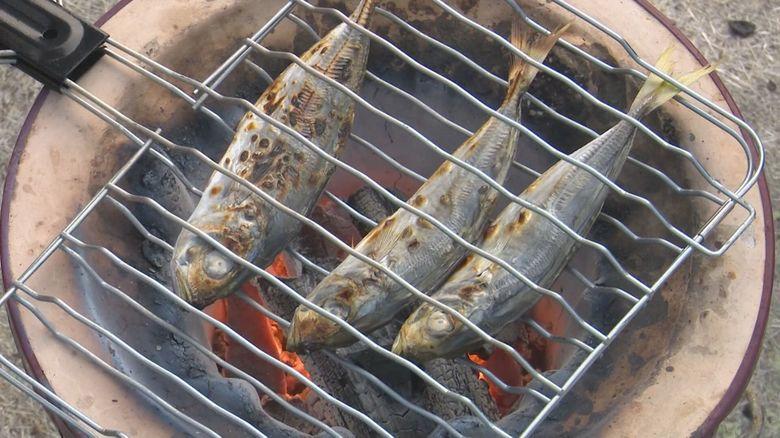 干物店の3代目は魚嫌いだった…店継ぐ際に食べ始めたら「魚おいしい」 自信持って勧めるアジの丸干し