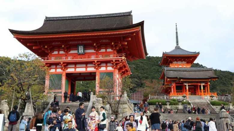 古都・京都のイメージ吹き飛ぶ斬新アイディアで勝負 京都でバンジー【体験動画】