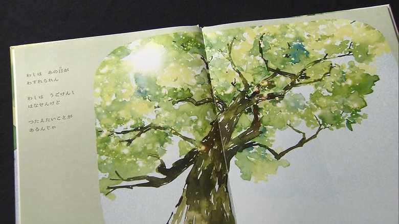 原爆の悲惨さを被爆樹木が語る…絵本に込めた平和へのメッセージ【広島発】