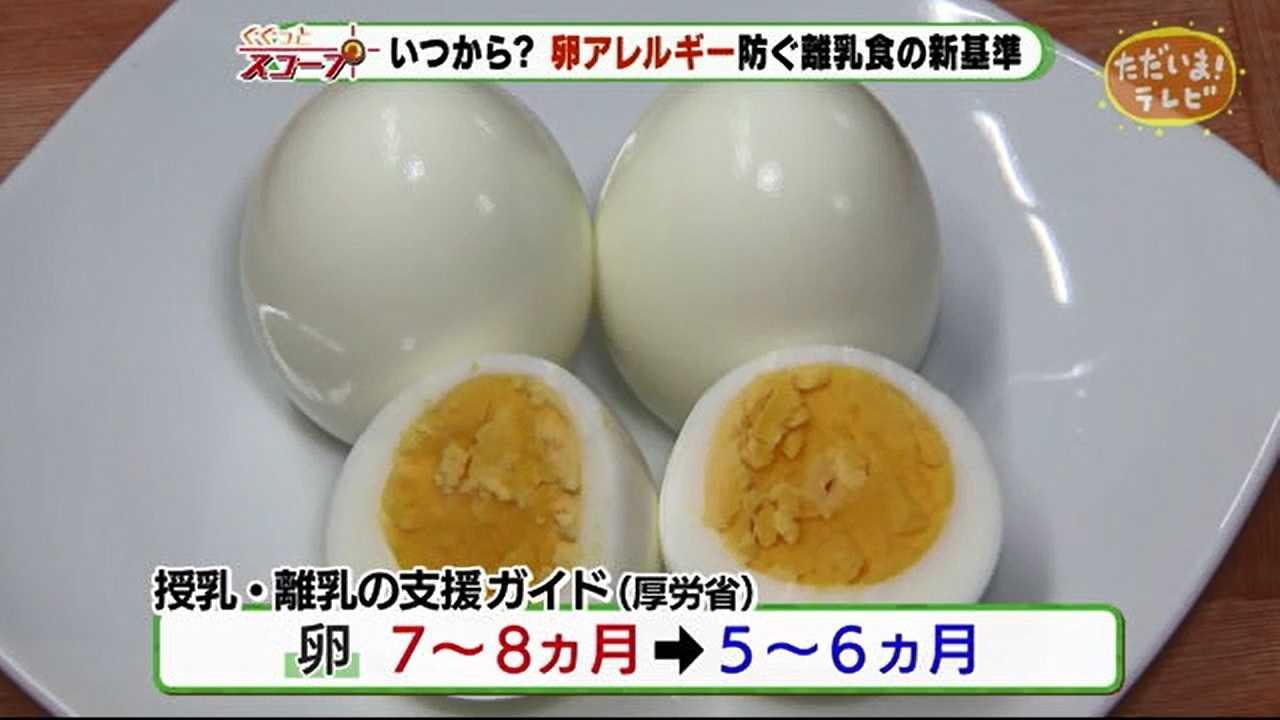 離乳食 卵 いつから