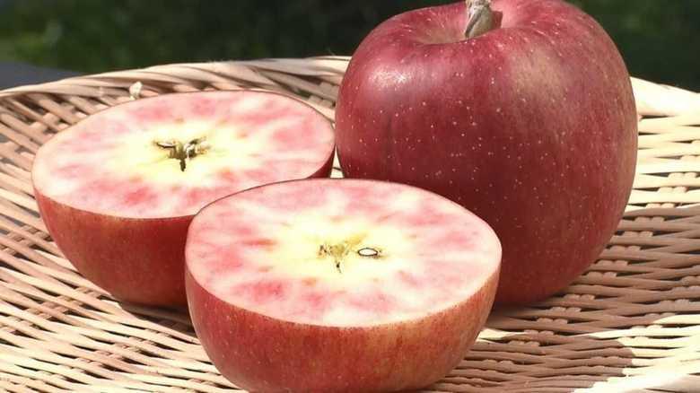 """開発まで30年…果肉まで赤いリンゴが""""スイーツ界""""を変えるか?【長野発】"""
