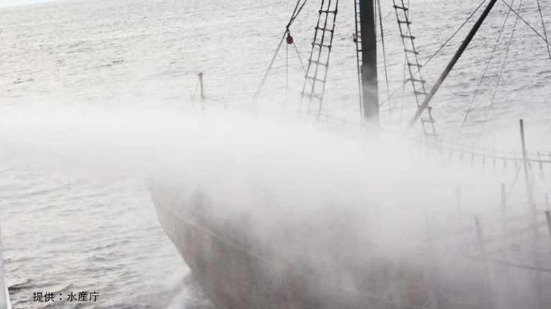 """""""武装""""した北朝鮮漁船団には水産庁の船では対処できない!  闇に消えた衝突の目的"""