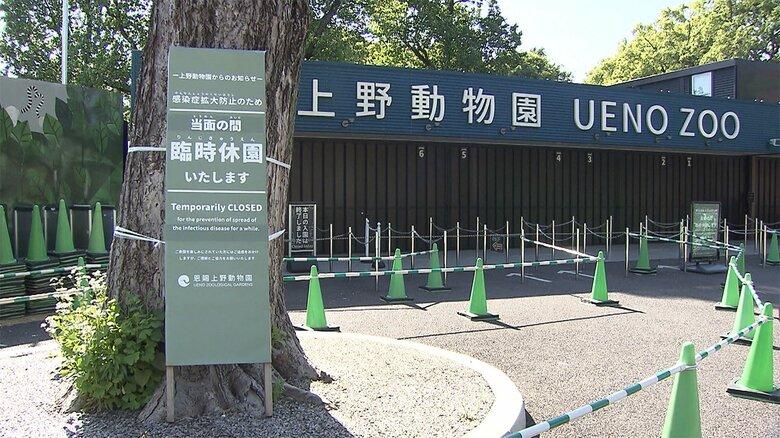 【速報】上野動物園のパンダ「シンシン」に妊娠の兆候