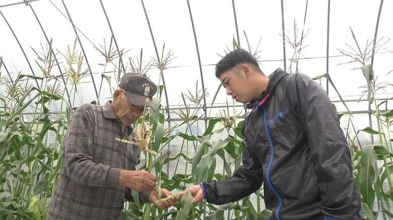 東日本大震災で父を失った24歳の息子が農業の後継者に 祖父と二人三脚で40種以上の作物を栽培