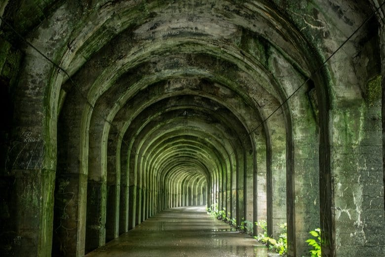 """新潟県にある""""神殿ロード""""が神秘的と話題…どんな目的で作られたもの?県観光協会に聞いた"""
