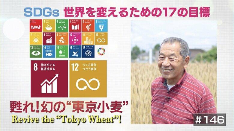 """一度は生産中止になった幻の""""東京小麦""""復活で地域活性化を図る農家の思い"""