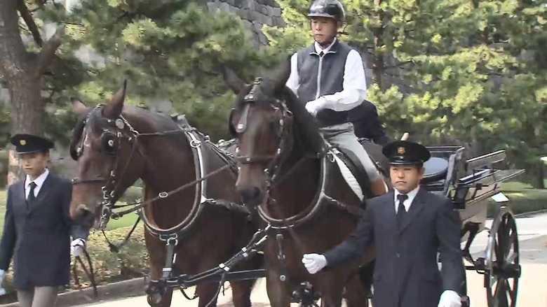 【独自】馬2頭を1人で驚きの手綱さばき 「親謁の儀」天皇陛下の乗られる馬車の練習に密着