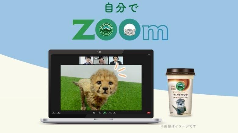 オンライン会議にかわいい動物たちが参加!? Zoomならぬ「ZOOm」で癒やし提供…イチオシ動物を聞いた