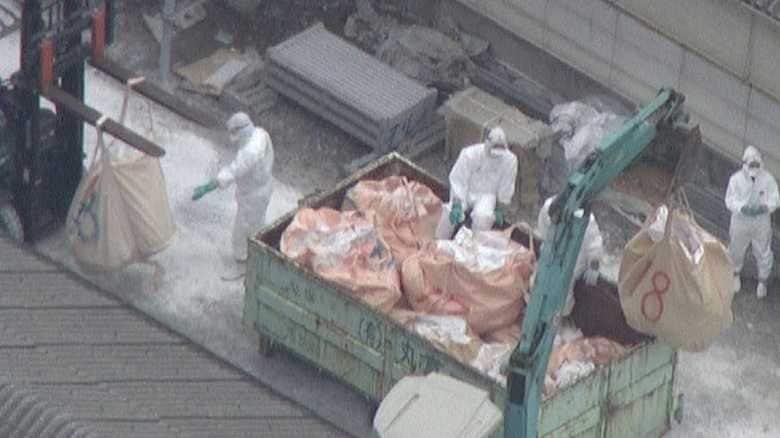 「日本から豚がいなくなる」も…なぜワクチン打たず?  豚コレラ拡大の悲痛の中で苦悩する政府
