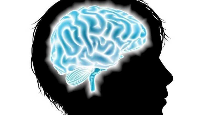 スポーツ指導での体罰が、子どもの脳を破壊!画像で判明した異常な「萎縮」「変形」!!
