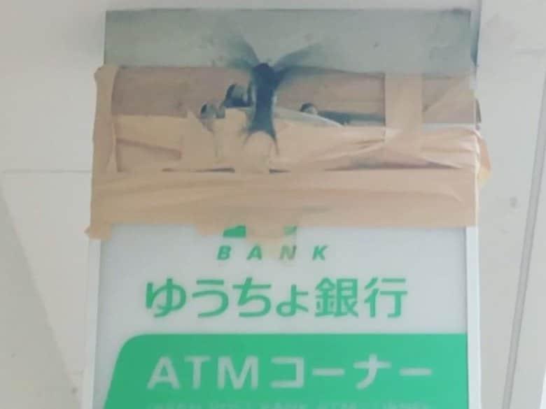 """郵便局の看板から落下した""""ツバメの巣""""を局員が手作りで補強 みんなで見守るツバメの巣立ち"""