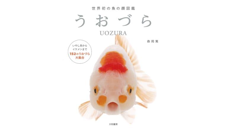 """魚の正面顔""""うおづら""""がかわいい…こんな表情をどうやったら撮れるのか聞いてみた"""