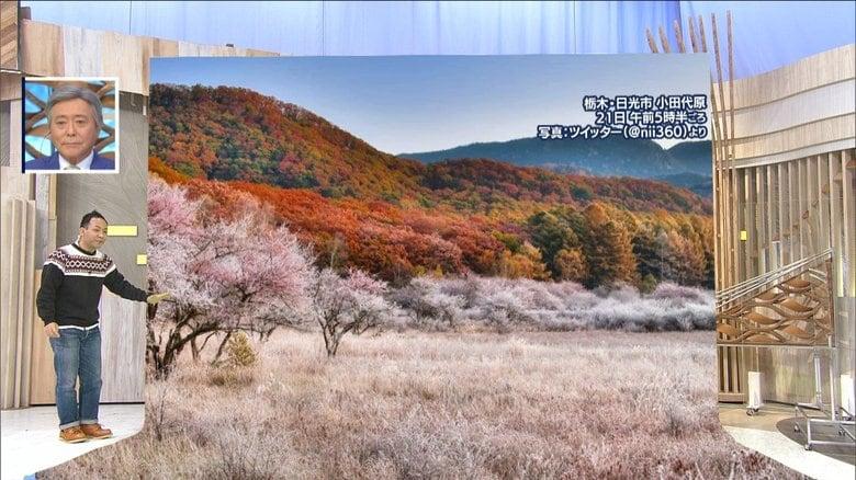 """関東で""""晩秋の絶景""""が! 近畿では「木枯らし1号」…東京はいつ頃に?"""