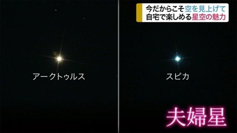 今だからこそ夜空を見上げて…おうち時間にオススメ「星空鑑賞」 仙台市天文台
