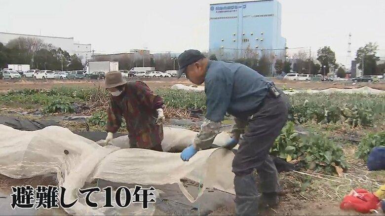 6割が「戻らない」…原発事故で集団避難した福島・双葉町民たちの今 避難先での10年が変えた思いと暮らし