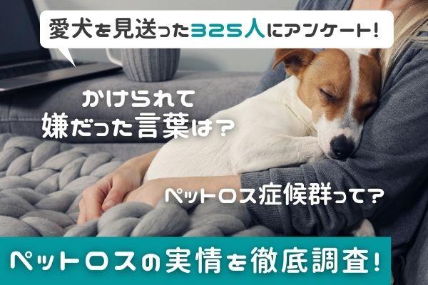 愛犬を亡くした約9割がペットロスを経験…。かけられて嫌な言葉や、新しいわんちゃんはお迎えする?など徹底調査【愛犬を見送った325人にアンケート】