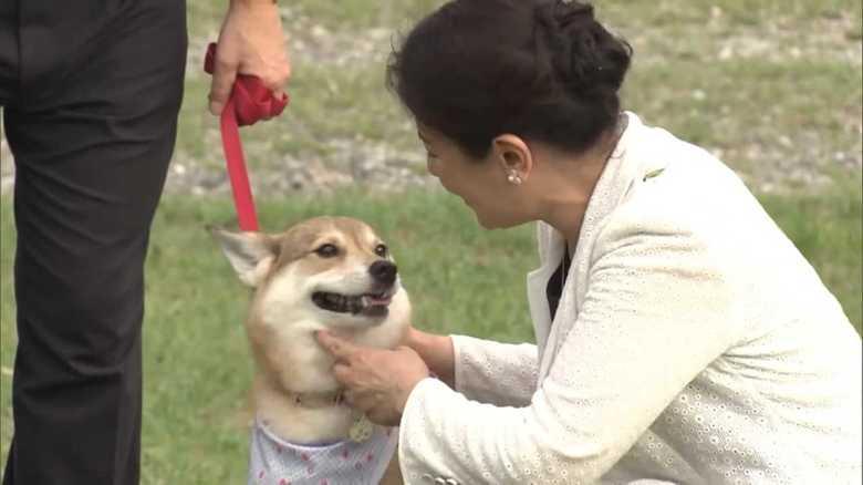 あふれる動物愛 天皇ご一家と犬猫物語