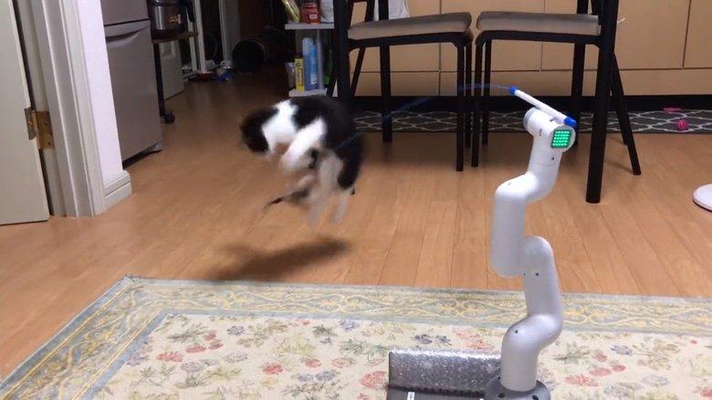 """元気すぎる子猫がずっと遊べる""""猫じゃらしロボット""""が話題…「飽きないための動き」を投稿者に聞いた"""