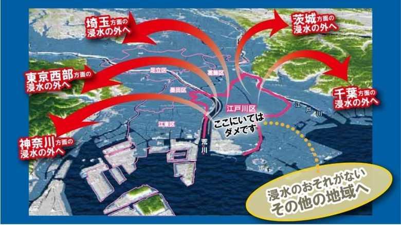 「ここにいてはダメ」江戸川区の水害ハザードマップが直球すぎて話題…担当者に聞いた