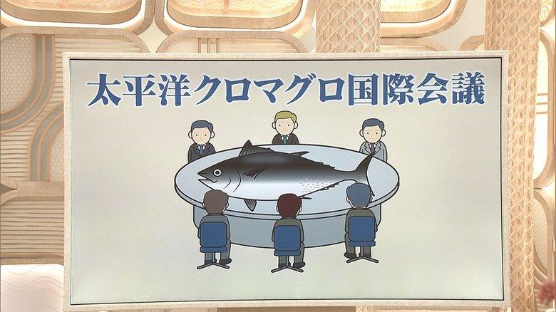 3分でわかるキーワード なぜ? 「クロマグロの漁獲枠」