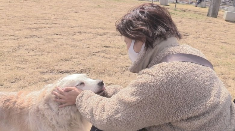 愛媛県に1匹だけ…引退する介助犬に感謝「ゆっくり過ごして」 共に暮らす女性が別れの決断