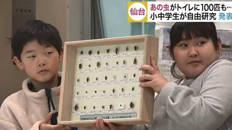 あの虫がトイレに100匹も…! 小中学生が自由な発想の研究成果を発表【宮城発】
