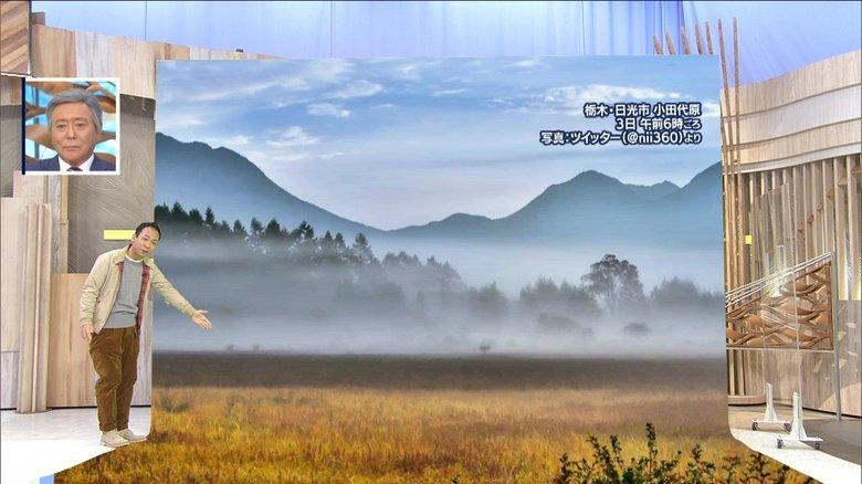 """【幻想的】""""紅葉""""と""""朝霧""""のコラボレーションで水墨画のような絶景"""