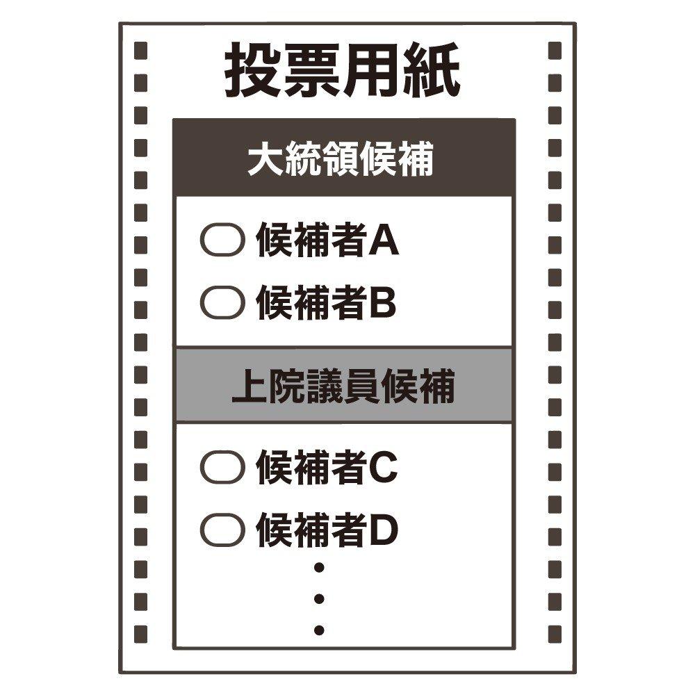 大統領 日 アメリカ 選挙 投票