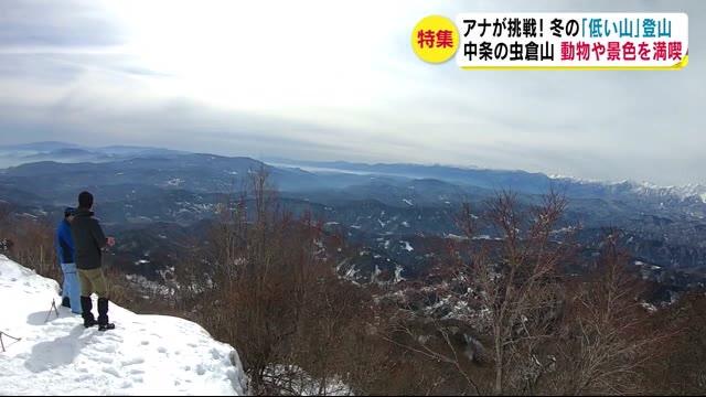 """冬の「低い山」登山に挑戦! カモシカ、サンショウウオ 春の兆し""""タラの芽""""… 大パノラマビュー"""