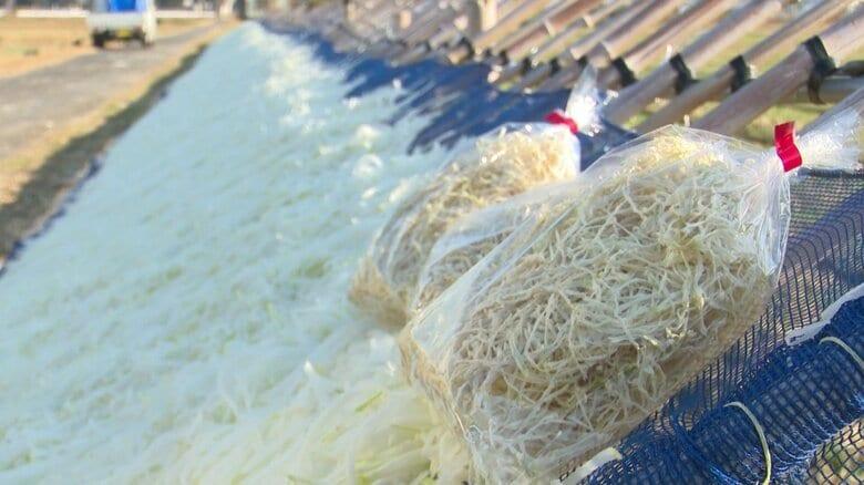 あえて自然の風と光で甘みを凝縮…特産品・切干大根の受け継がれる製法 「伊吹おろしで一気に乾かす」