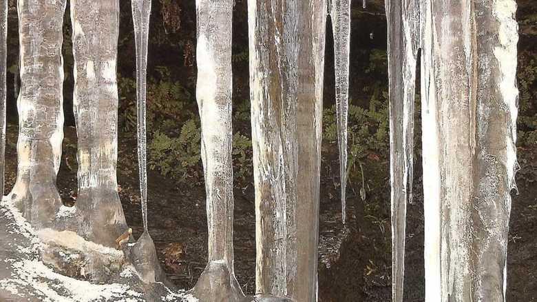 ものすごい透明度!冬の秩父が生み出す「氷柱」が神秘的