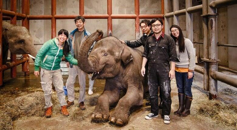 世界初!象の「しわ」を体感できるグラス『shiwa glass』ができるまで
