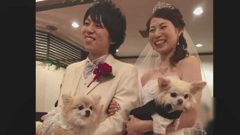 離婚協議中に水難事故を装い妻殺害…野田容疑者のスマホ検索履歴に「殺人」「交通事故」