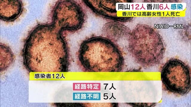 者 岡山 感染