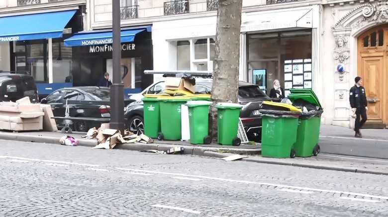 """「花の都」パリにネズミが大量発生 """"年金改革""""ストでゴミ処理施設が稼働停止"""
