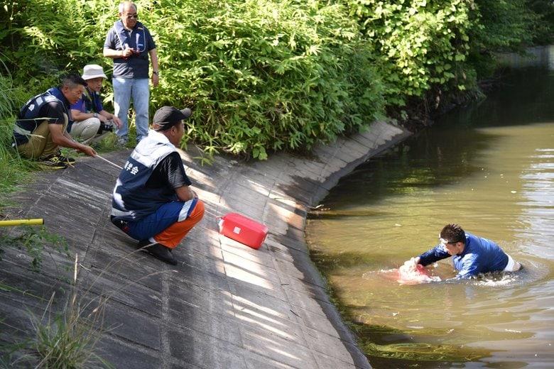 一度落ちたら上がれない!? ため池の怖さがわかる動画が話題…適切な救助の待ち方を聞いた